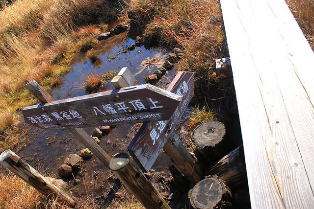 20121014_八幡平_0035