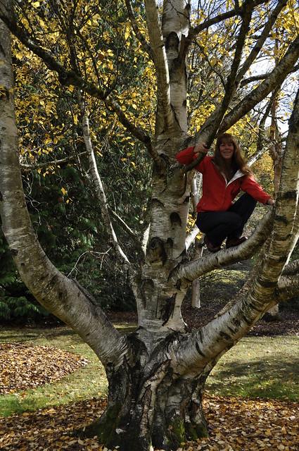 arboretum 10-24-2012 032