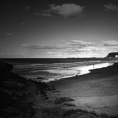 jebbribillum  beachscape