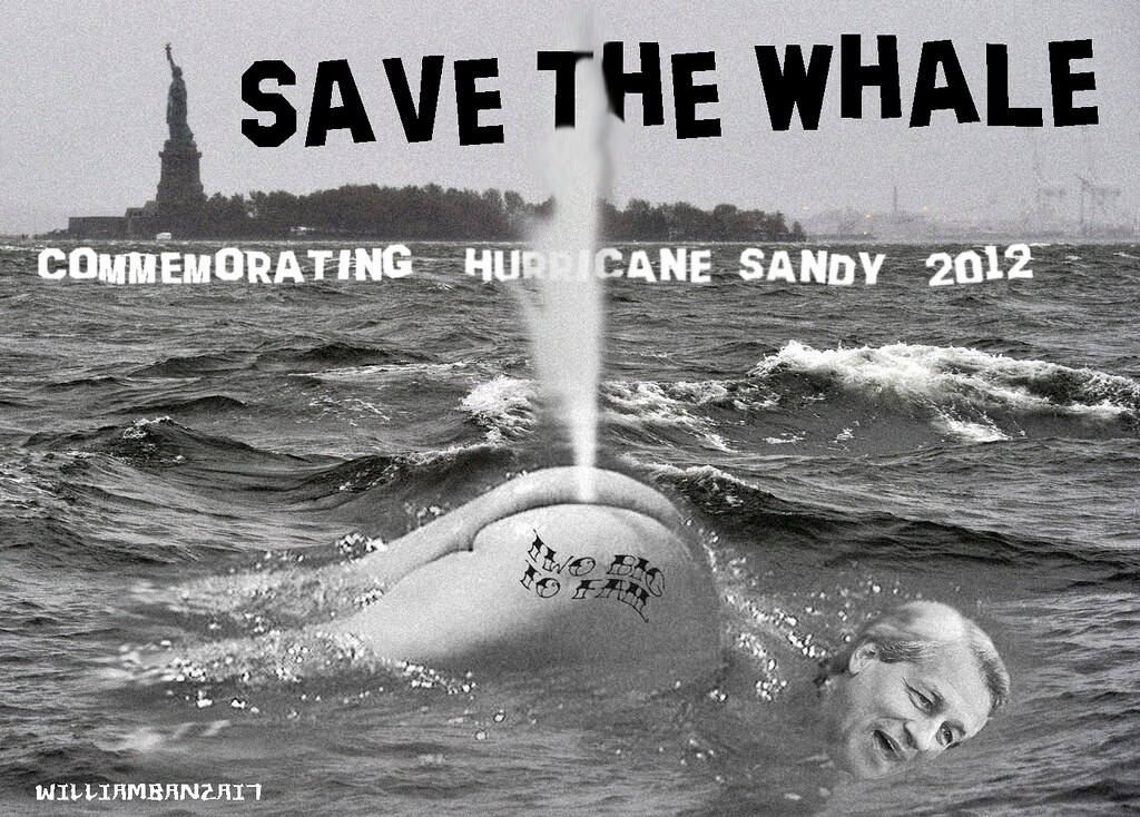 SANDY 2012: SAVE THE WHALE