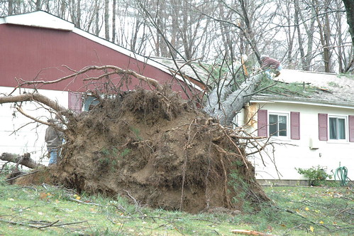 Hurricane Sandy damage in West Milford, N.J. by Jai Agnish