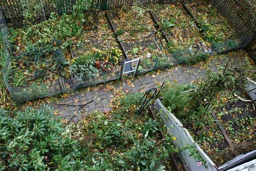 garden aerial post sandy 013