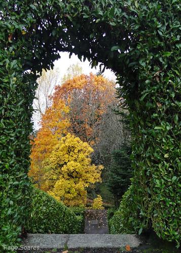 autumn portugal automne garden landscape herbst jardin paisagem jardim otoño autunno garten outono caramulo jardín