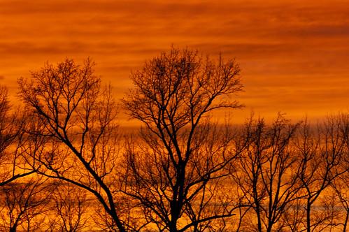sunset scott nashville pentax m42 arkansas 135 smalltown steinheil southwestarkansas pentaxart scottdunson