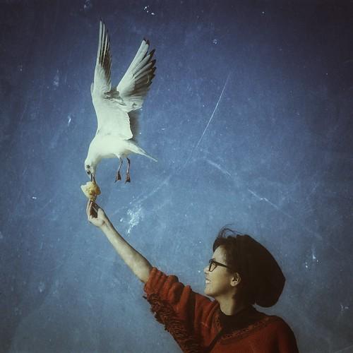 [フリー画像素材] 哺乳類 (その他), 鴎・カモメ, 女性, 人物 - 動物, 鳥類 - 飛ぶ ID:201301291800
