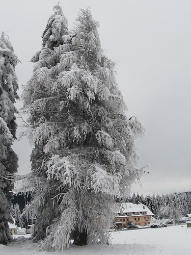 une journee a la neige aux donon 015