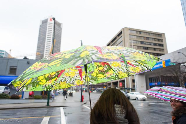 Jungle Umbrella