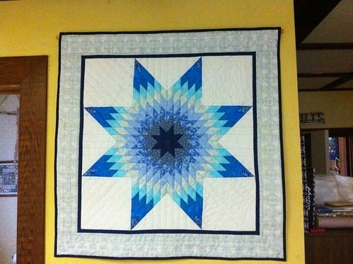 Project Quilting 13-2  one color+ white