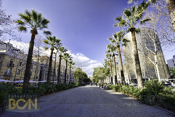 Rambla del Raval, Barcelona