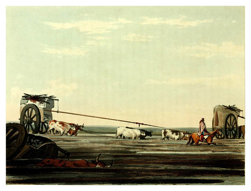 011-Pasando un pantano con carros-Picturesque illustrations of Buenos Ayres and Monte Video..-1820- Emeric Essex Vidal