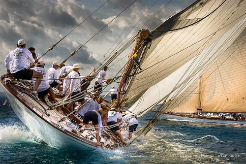 Voiles de St Tropez 2012-6887.jpg