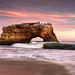 Forces at Work - Natural Bridges, Santa Cruz, California