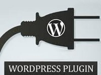 How to Use WordPress Plugins?