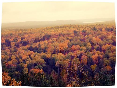 trees colors landscape cloudy lookout