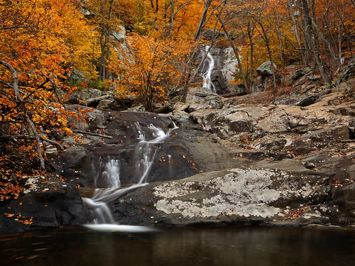 Shenandoah: Lower Whiteoak Falls