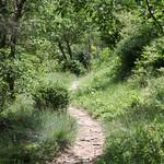 Path above Gigondas