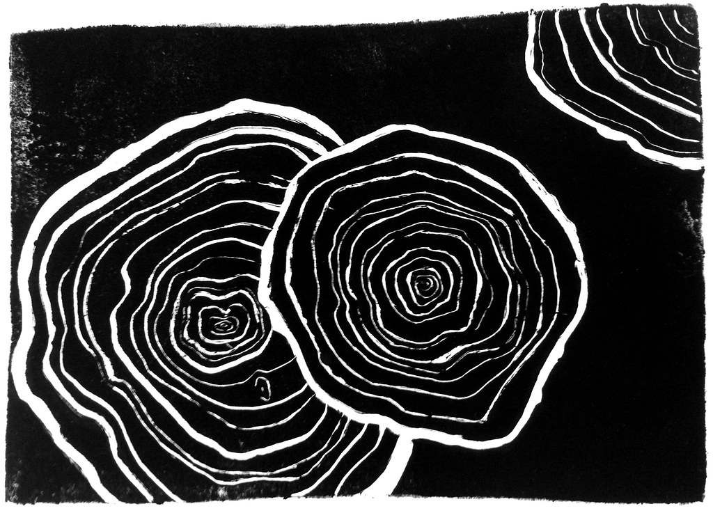 Tree Rings Monotype