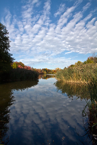 park blue autumn trees sky ny newyork reflection fall nature water sunshine clouds outdoors pond pretty day skies cloudy scenic sunny rochester cattails blueskies trout seneca nys wny monroecounty