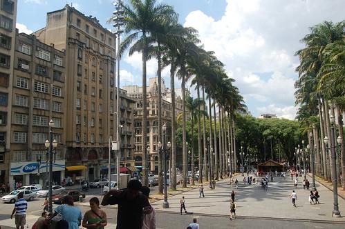 Von den Stufen der Kathedrale auf den Platz davor. Links und rechts Palmenalleen