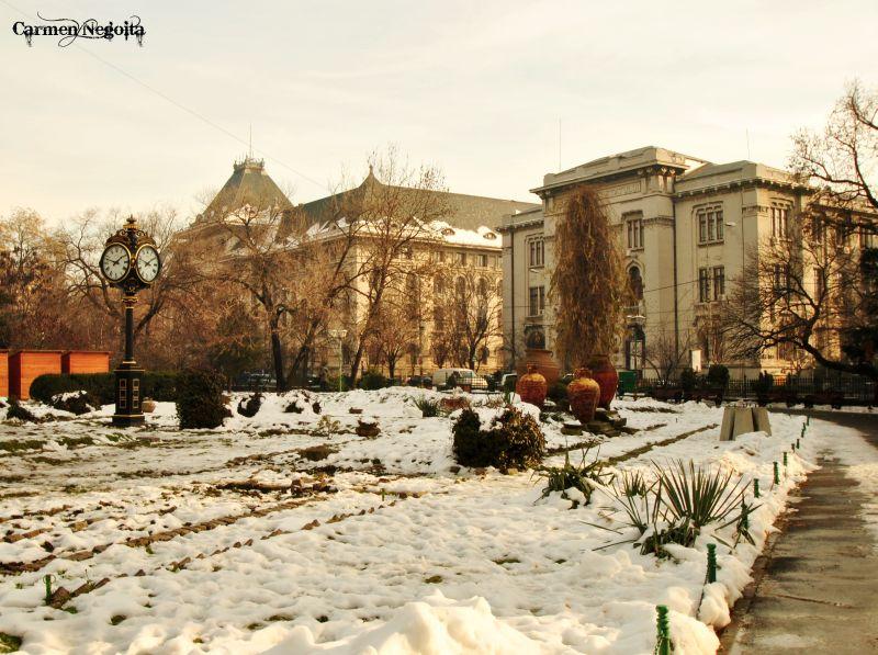 Bucuresti_Parcul Cismigiu_7