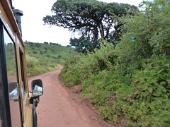 On the rim of Ngorongoro Crater