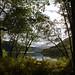 Kodiak Landscapes