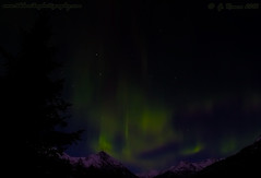 Lights_Over_Moose_Pass