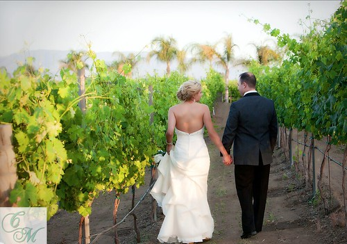 Vineyard Weddings San Diego Orange County Southern California