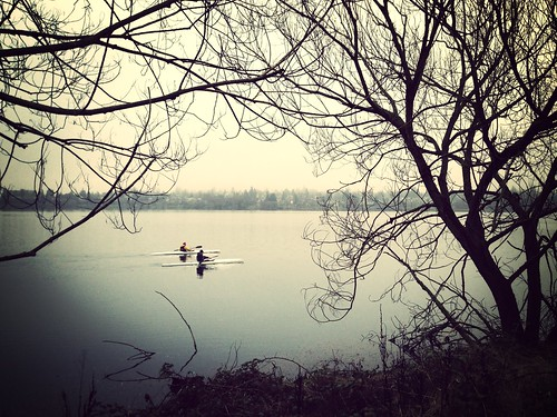 Something I Saw - Boaters on Greenlake #fmsphotoaday