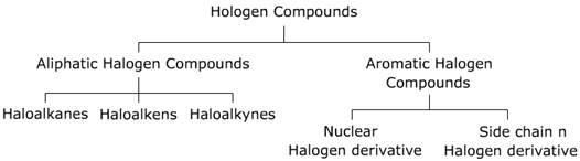 CBSE Class 12 Chemistry Notes: Haloalkanes and Haloarenes