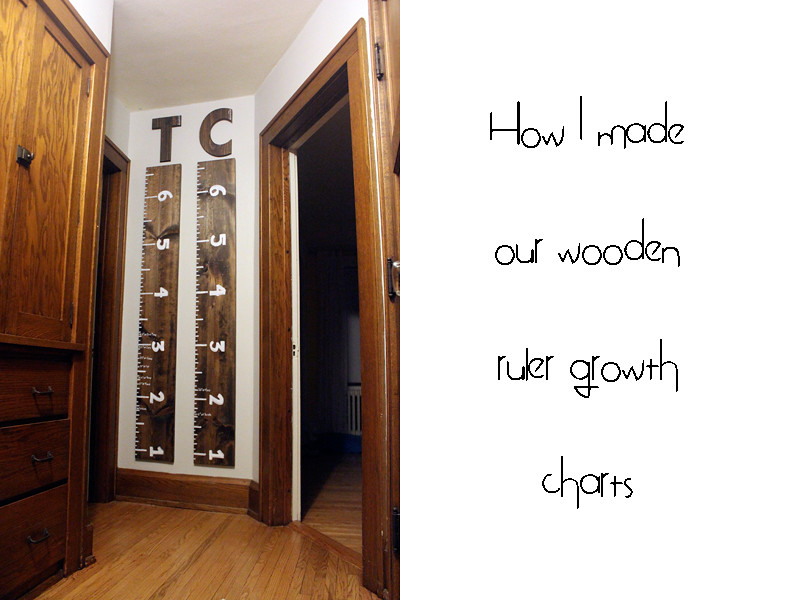 My Life In Transition Check Mark Diy Ruler Growth Charts