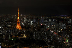 Panorama view from Roppongi Hills at night, Tokyo (IV)