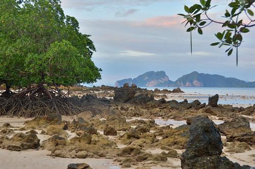 8075541835 ac597f5c83 Thailands Best Island?
