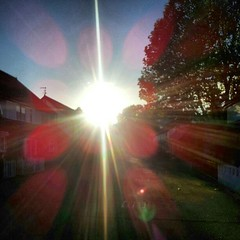 flare(0.0), night(0.0), sunlight(1.0), light(1.0), lens flare(1.0),