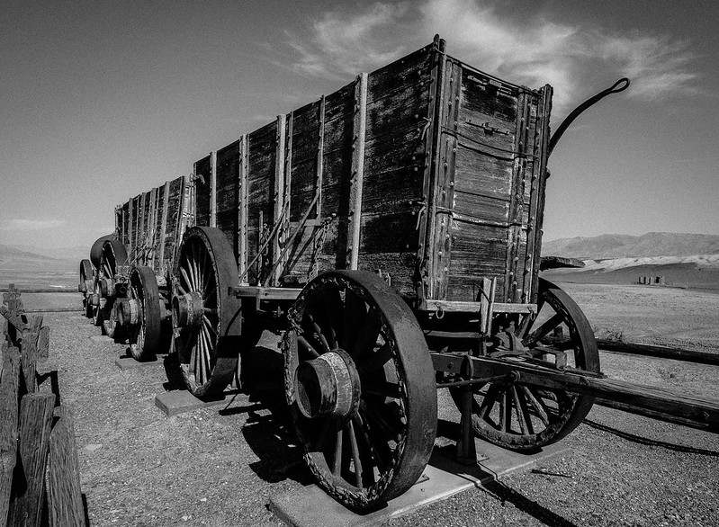 20 Mule Train Wagon B&W