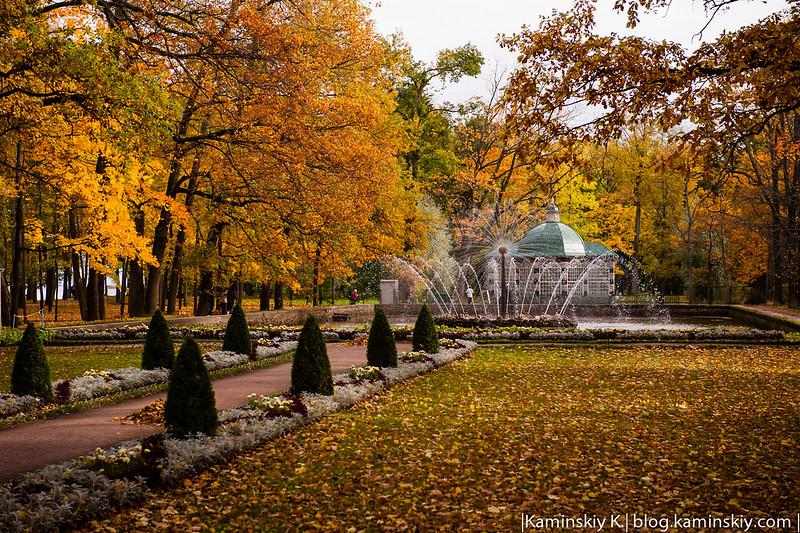 Petergof-2012-10-06-0908