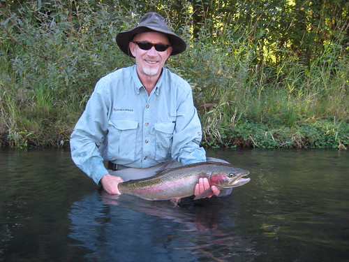 Fall steelhead report deschutes river and willamette for Willamette river fishing report