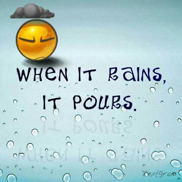 It never rains but it pours essay help