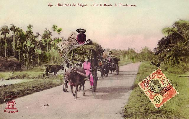 Environs de Saigon - Route de Thudaumot