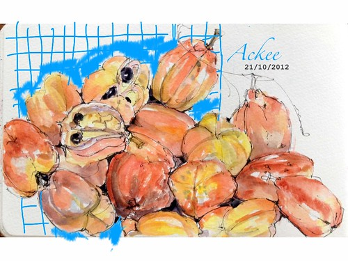 Ackee - not pumpkins by crclapiz
