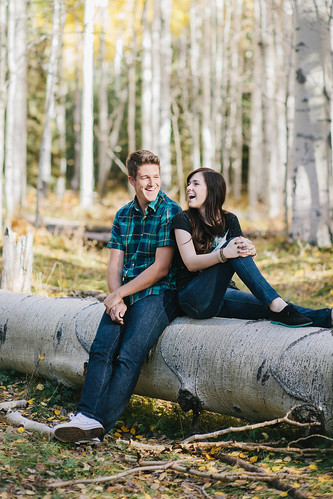 NickClaireEngagements2012-15
