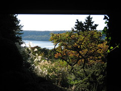 Framed View of Sumac 1