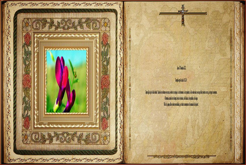 Resultado de imagen para Lucas 14,12-14