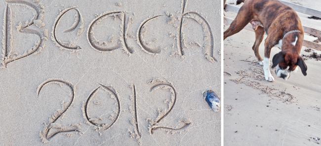 beach2012