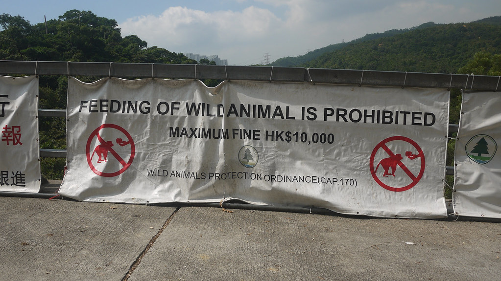 Feeding of Wile Animal is Prohibited