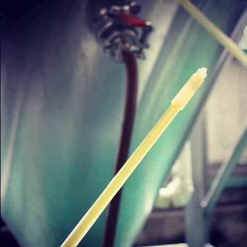 このシンプルなガラス管で詰めています。原理はボールペンと同じで、先端を瓶底に押しあてるとビールが出て、離すと止まります。