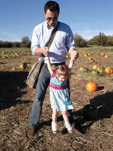 Pumpkin Picking at Eckerts