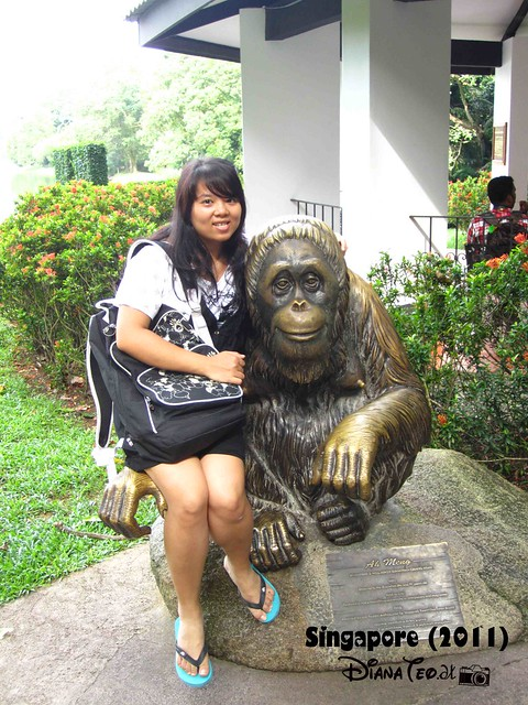 Day 3 Singapore - Zoo Singapore 16