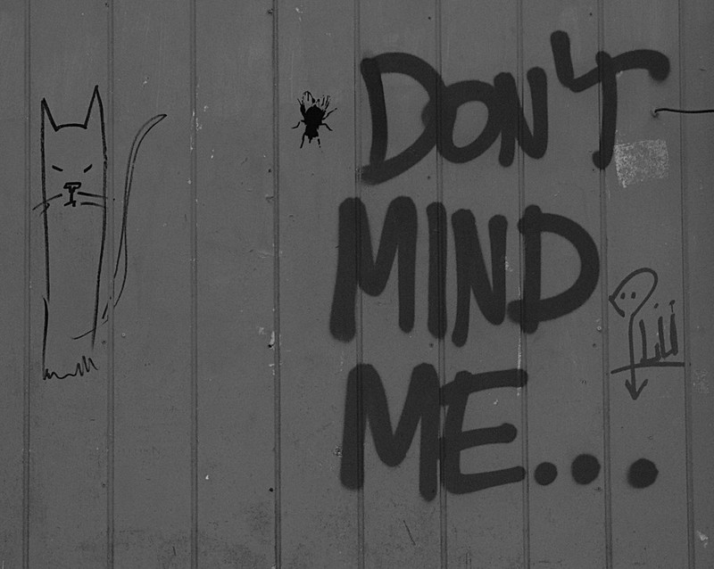 Don't Mind Me. . .