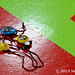 Cincinnati Rollergirls 2013 Try-outs, 2013-01-06